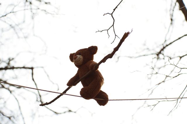 Kristoffer Eliassen – Torshovparken 2