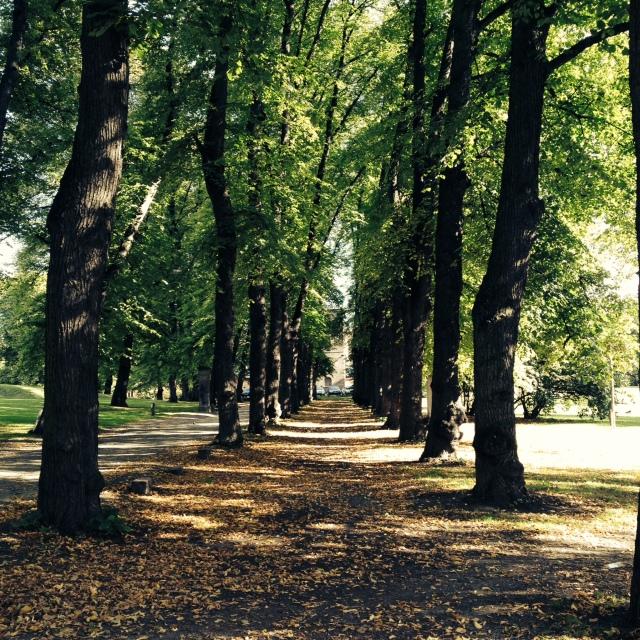 Fengselsparken –Aina Kristiansen
