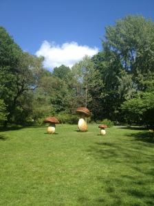 Aina Kristiansen – Botanisk hage