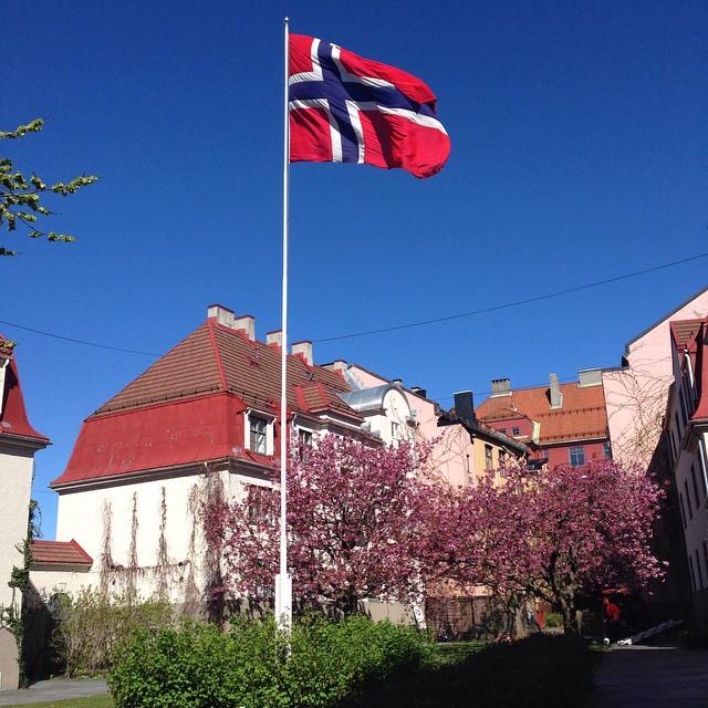 Hanna Norberg – Bentsebrugata