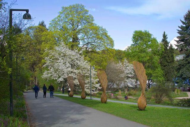 Jon Arne Foss - Botanisk hage