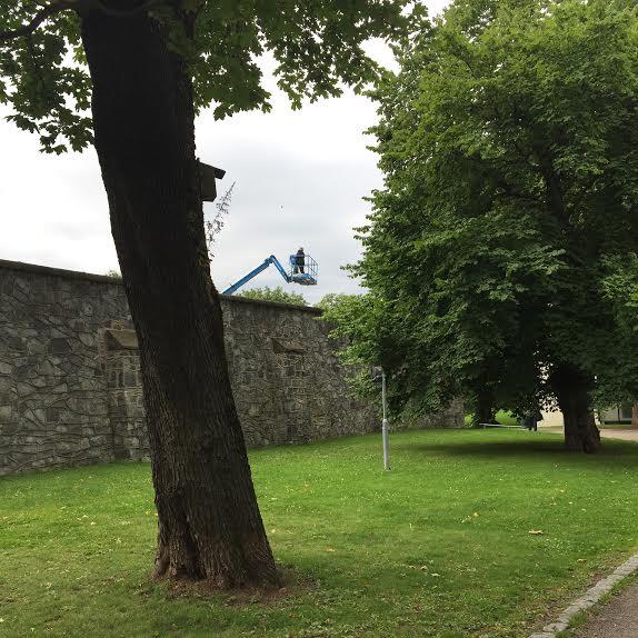Aina Kristiansen – Fengselsparken
